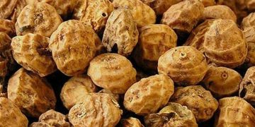 tiger nut health benefits