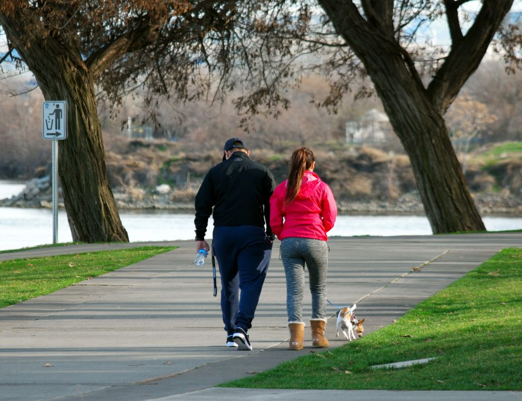 Two people walking with their dog